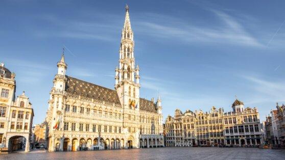 Бельгийцы намерены судиться с властями из-за мер изоляции