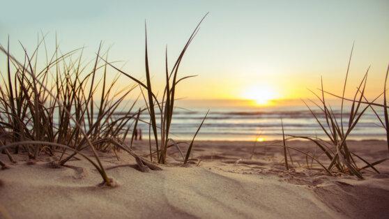 Стала известна дата открытия пляжей в Крыму и Краснодарском крае