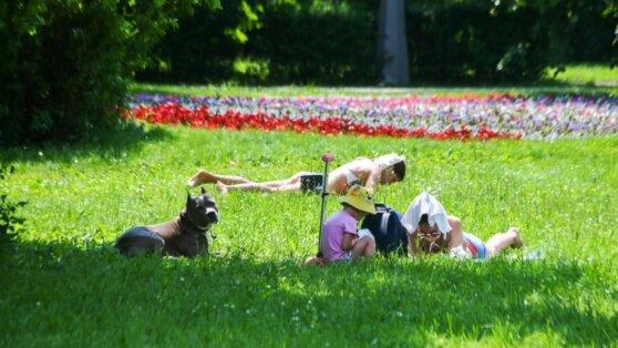 Синоптики предупредили москвичей об аномальной жаре