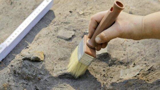 В Коммунарке археологи обнаружили монеты времен Золотой Орды