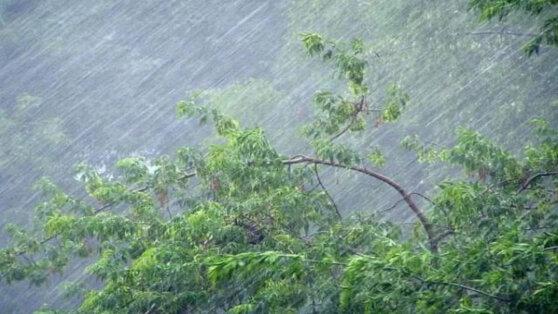 В ближайшее время на Москву обрушатся дождь и сильный ветер