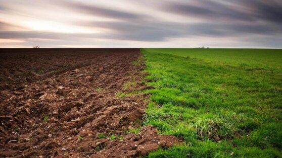 Российские ученые открыли свойство почвы, предсказывающее изменение климата