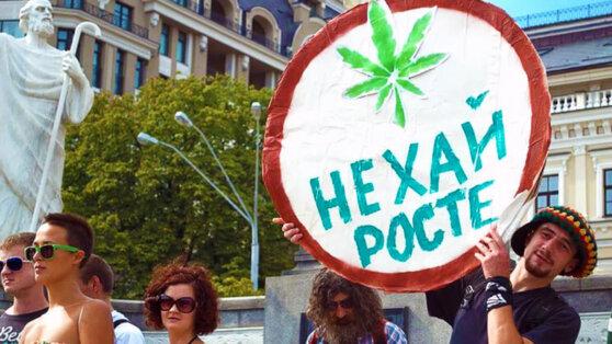 Украинцы потребовали у Зеленского легализовать марихуану