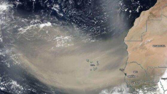 Угрожающее США облако пыли признали крупнейшим за 50 лет