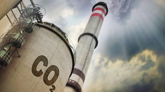 Пандемия COVID-19 грозит миру серьезным экологическим ущербом