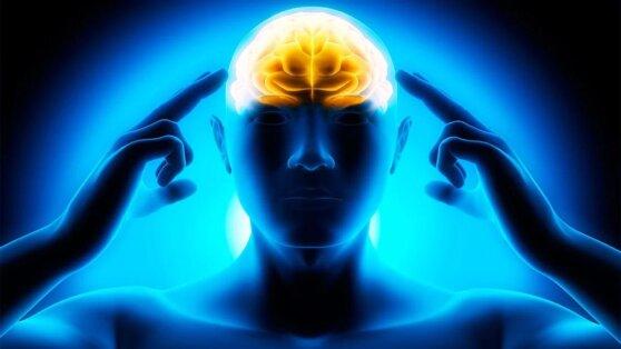 Ученые назвали вещества, без которых ухудшается работа мозга
