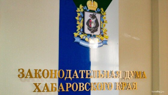 В Хабаровске арестованы два депутата от ЛДПР
