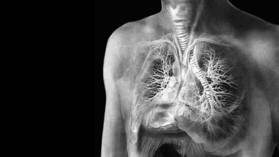 Названы регионы России с самой высокой заболеваемостью туберкулезом