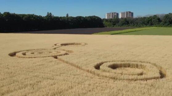 Таинственные круги появились в поле под Воронежем
