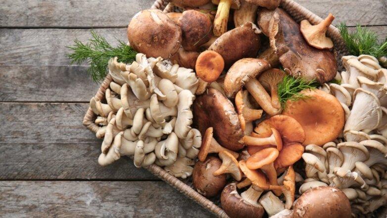 Разные грибы на столе