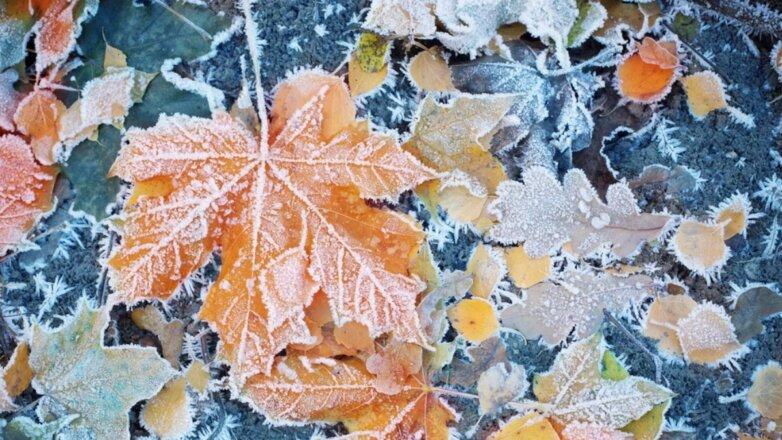 Погода иней заморозки похолодание осень два