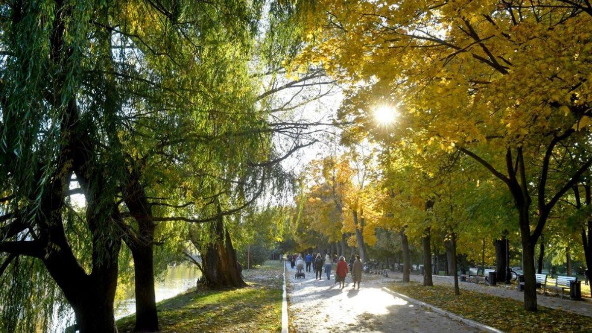 В Москве 2 сентября будет солнечно