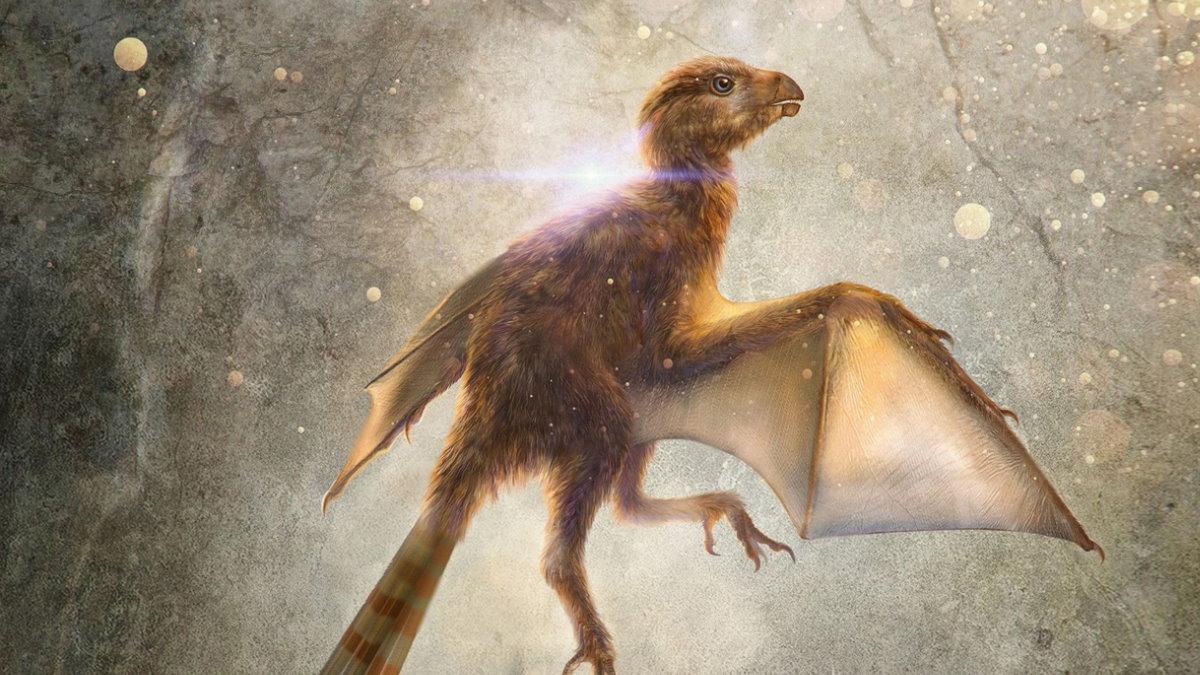 Амбоптерикс Ambopteryx динозавр