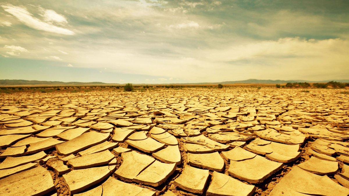 Безжизненная пустыня вымирание
