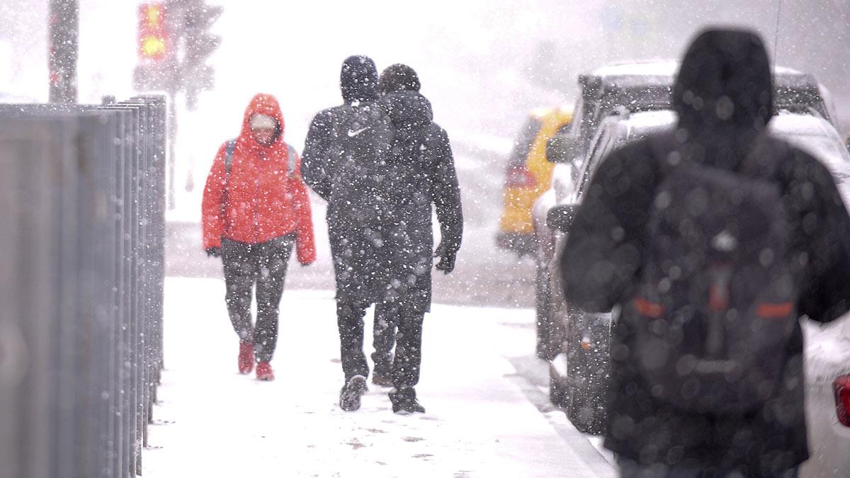 снег зима проходит погода заморозки снегопад