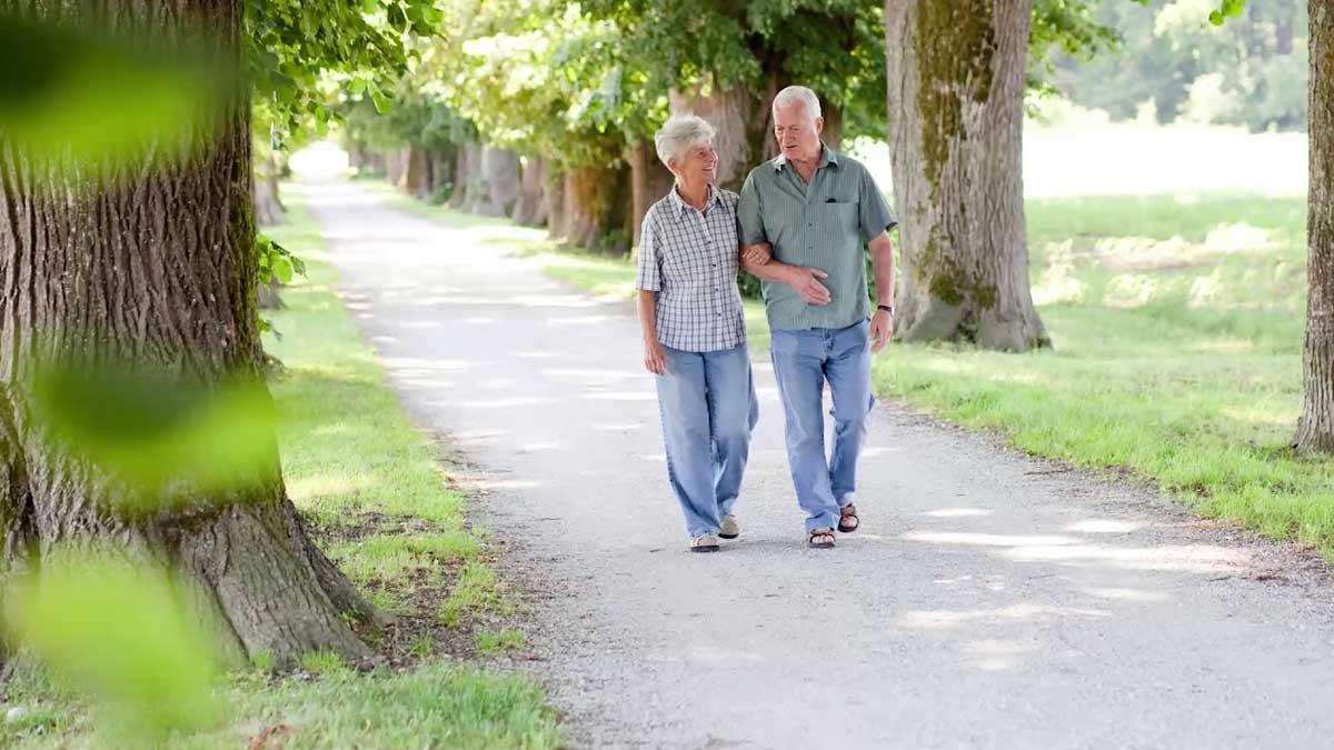 Здоровье прогулки парк пожилые люди