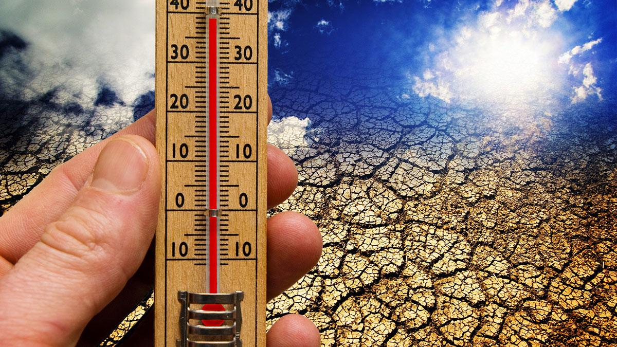 глобальное потепление жара засуха климат температура