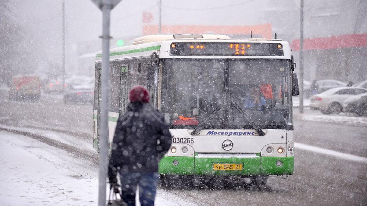снегопад в Москве автобус зима снег транспорт