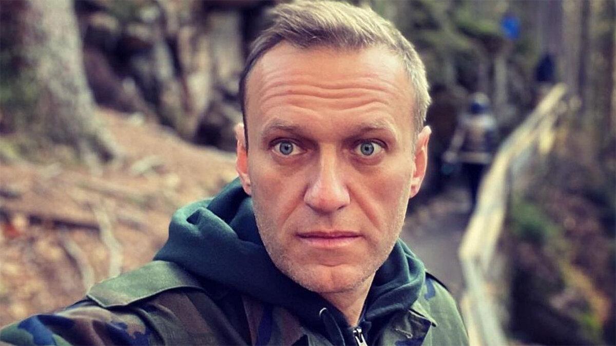 Алексей навальный в камуфляже взгляд