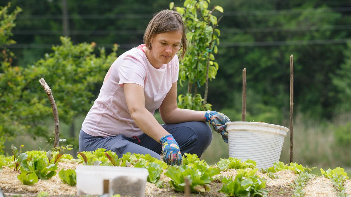 Женщина сажает растения